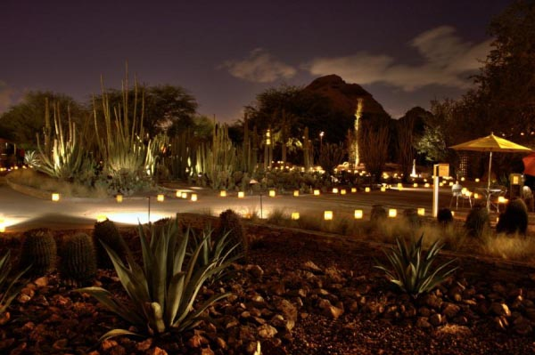 luminarias_at-phoenix-botanical-gardens
