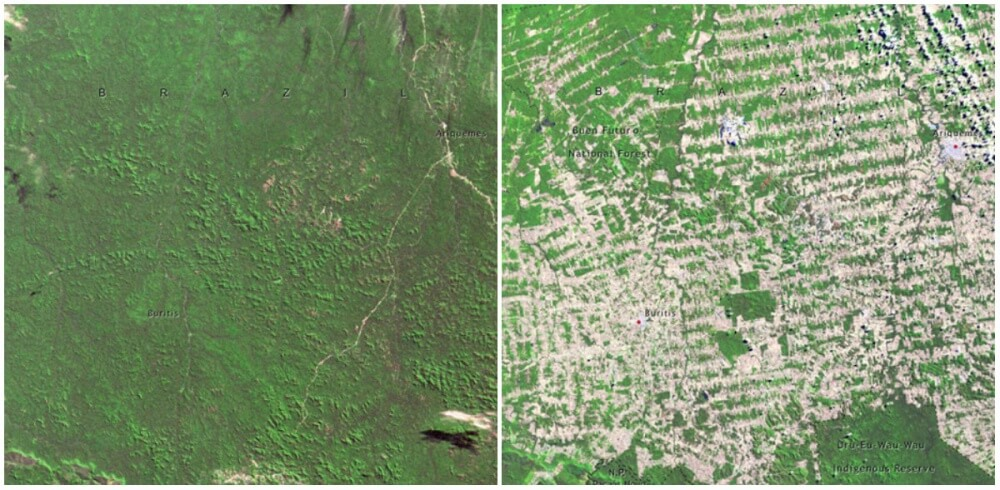 Forests in Rondonia, Brazil. June, 1975 — August, 2009